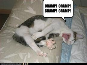CRAMP!  CRAMP!  CRAMP!  CRAMP!