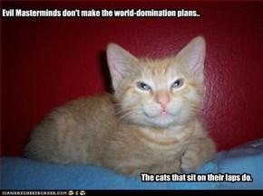 Evil Masterminds don't make the world-domination plans..