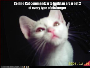 Ceiling Cat commandz u to build an arc n get 2 of every type of chzburger