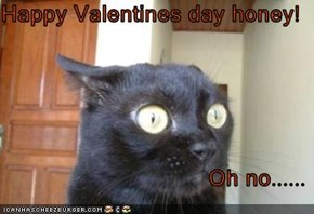 Happy Valentines day honey!  Oh no......