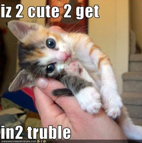 iz 2 cute 2 get   in2 truble
