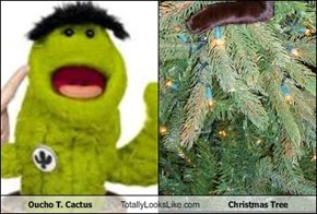 Oucho T. Cactus Totally Looks Like Christmas Tree