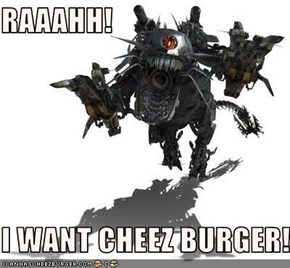 RAAAHH!  I WANT CHEEZ BURGER!
