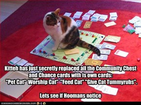 "Kitteh has just secretly replaced all the Community Chest and Chance cards with is own cards:   ""Pet Cat""  Worship Cat""  ""Feed Cat"" ""Give Cat Tummyrubs"".  Lets see if Hoomans notice"