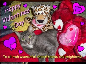 Happy Valentines Day from SplittyCat