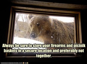 The right to arm bears?