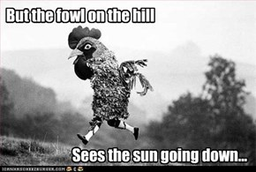 But the fowl on the hill