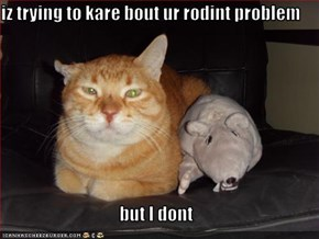 iz trying to kare bout ur rodint problem  but I dont