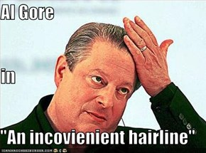 "Al Gore in ""An incovienient hairline"""