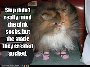 Skip didn't really mind the pink socks, but the static they created sucked.