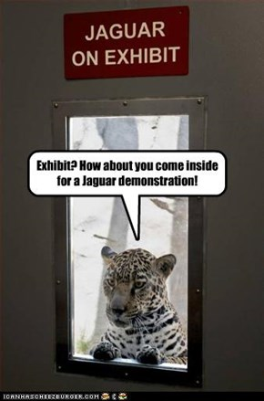 Exhibit? How about you come inside for a Jaguar demonstration!