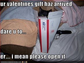 ur valentines gift haz arrived dare u to... er.... i mean please open it