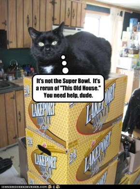 "It's not the Super Bowl.  It's a rerun of ""This Old House.""  You need help, dude."