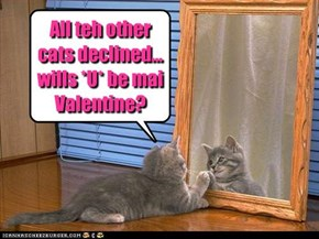 All teh other cats declined... wills *U* be mai Valentine?