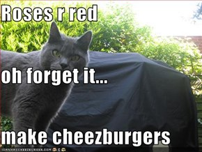 Roses r red  oh forget it... make cheezburgers