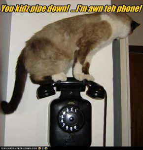 You kidz pipe down!  ...I'm awn teh phone!