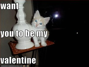 want you to be my valentine