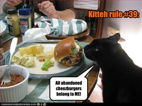 Kitteh rule #39: