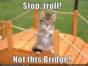 Stop, troll!  Not this Bridge!