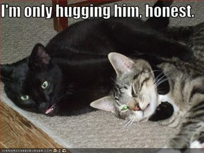 I'm only hugging him, honest.