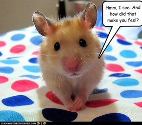 The Hamster is [IN]