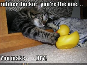rubber duckie , you're the one. . .   You make----- HEY!
