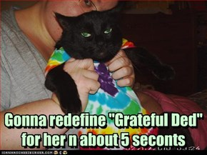 "Gonna redefine ""Grateful Ded"" for her n about 5 seconts"
