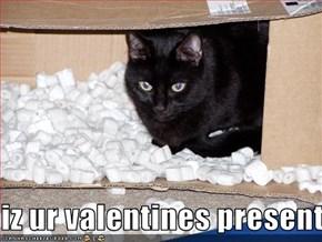 iz ur valentines present
