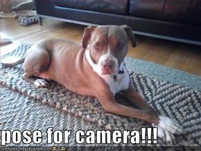 pose for camera!!!