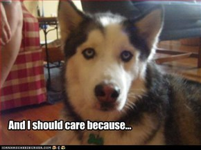 And I should care because...