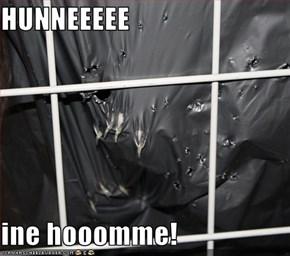 HUNNEEEEE  ine hooomme!