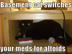 Basement cat switches out  your meds for altoids