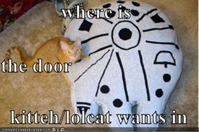where is the door kitteh/lolcat wants in