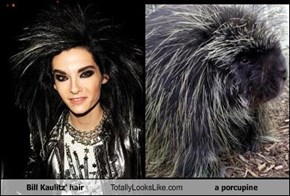 Bill Kaulitz' hair Totally Looks Like a porcupine