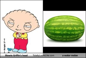 Stewie Griffin's head Totally Looks Like a water melon