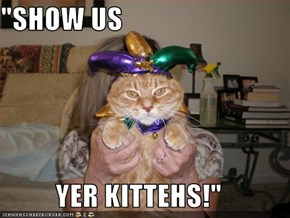 """SHOW US  YER KITTEHS!"""