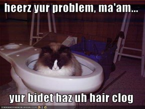 heerz yur problem, ma'am...    yur bidet haz uh hair clog