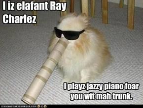 I iz elafant Ray Charles