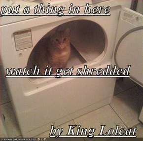 put a thing in here watch it get shredded by King Lolcat