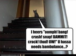 "I heers ""oomph! bang! crash! snap! DAMMIT! crack! thud! OW!"" U hassa needs bambulance...?"
