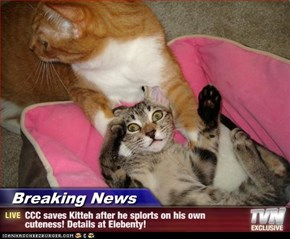 Breaking News - CCC saves Kitteh after he splorts on his own cuteness! Details at Elebenty!