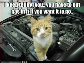I keep telling you.. you have to put gas in it if you want it to go..