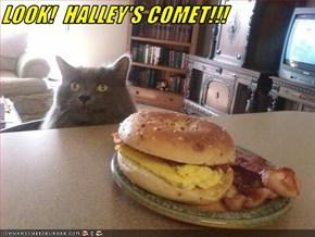 LOOK!  HALLEY'S COMET!!!