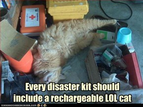 Every disaster kit should include a rechargeable LOL cat