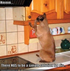 Hmmm...   There HAS to be a simple solution for dis...