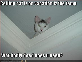 Ceiling cat iz on vacation Iz the temp   Wat Godly deed does u need?