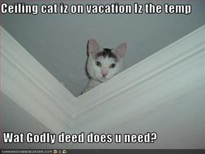 Ceiling cat iz on vacation Iz the temp   Wat Godly deed does u need?