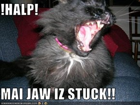!HALP!  MAI JAW IZ STUCK!!