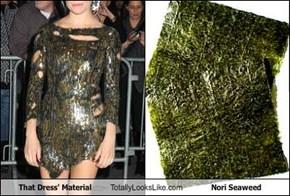 That Dress' Material Totally Looks Like Nori Seaweed