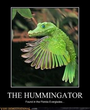THE HUMMINGATOR